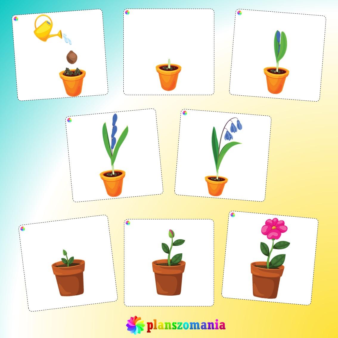 układanka edukacyjna planszomania do druku pdf pomoce edukacyjne materiały dydaktyczne wiosenne sekwencje do układania dla dzieci