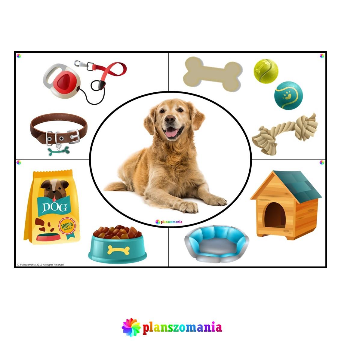 zwierzęta domowe układanka klasa 1 2 3 szkoła podstawowa dla dzieci przedszkole zadanie pomoce edukacyjne pdf do druku za darmo scenariusz
