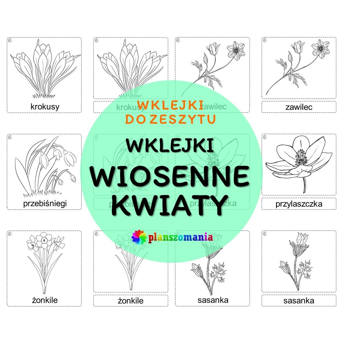wklejki wiosenne kwiaty przebiśniegi sasanka zawilec wiosna plansze edukacja przedszkole planszomania do druku do zeszytu pdf
