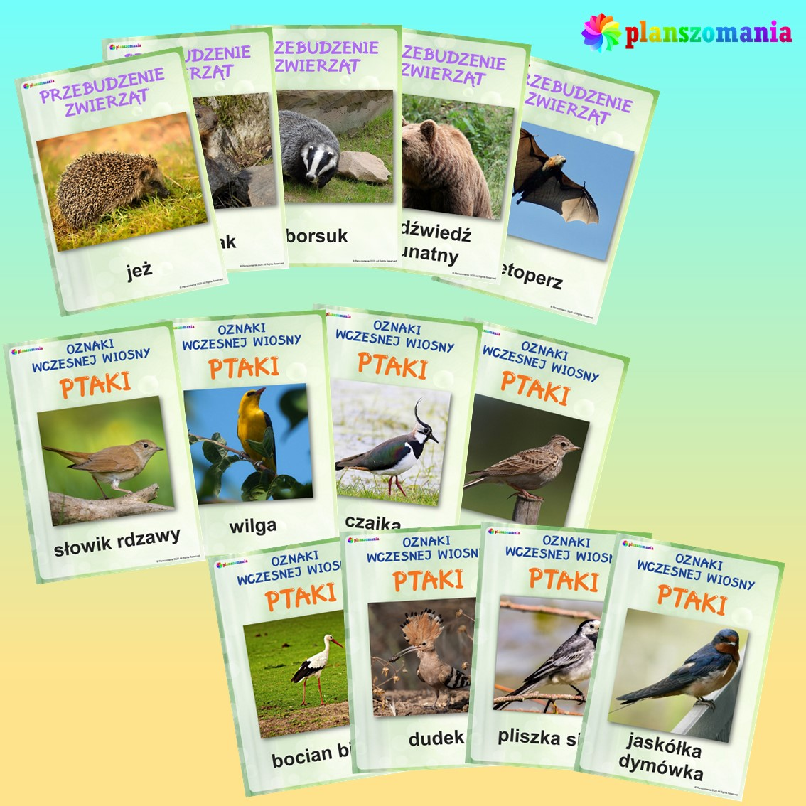 wiosna dużypakiet edukacyjny pdf do druku dla dzieci planszomania scenariusz zajęć edukacja wczesnoszkolna kwiaty